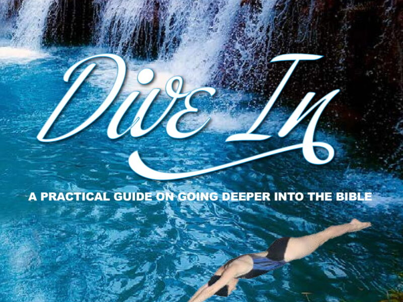Dive In Front Cover
